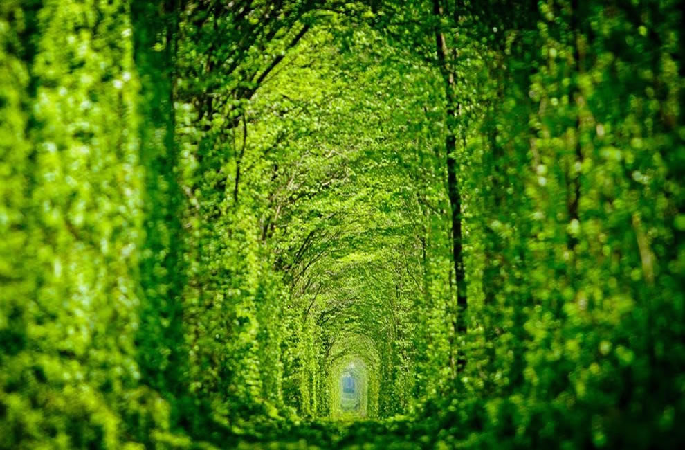 Tunnel of love aka green mile Kleven train tunnel