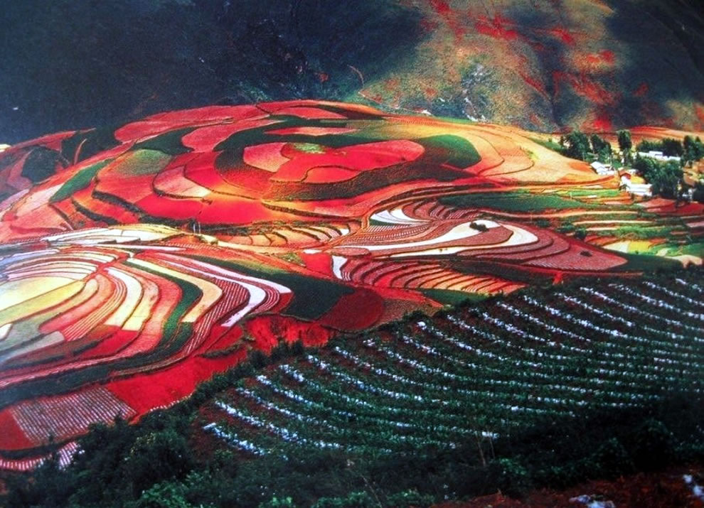 Colorful fields of Dongchuan district