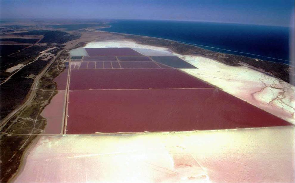 Hutt Lagoon, Western Australia brine shrimp farm
