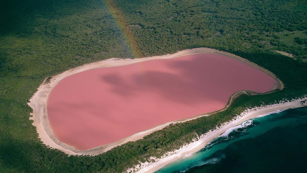 Lake Hillier Pink Lake with rainbow in Australia