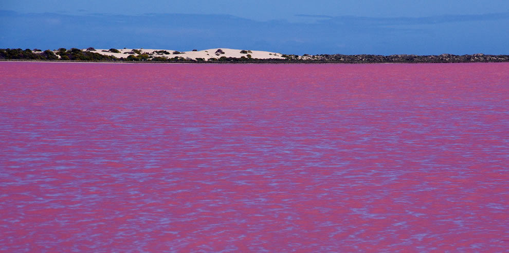 Pink Lake at Gregory Australia