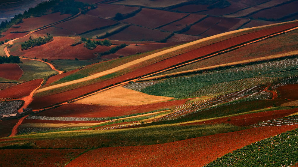 Red Land Dongchuan