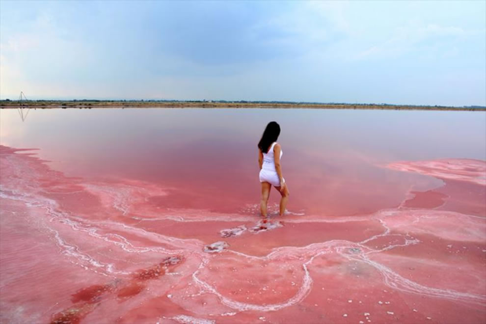 Pretty Pink Lakes Across The Globe 54 Pics