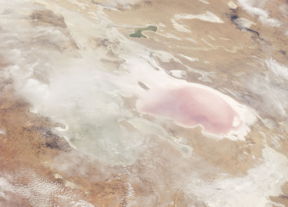 Salt-loving bacteria gives reddish pink tint as water flows into Lake Eyre