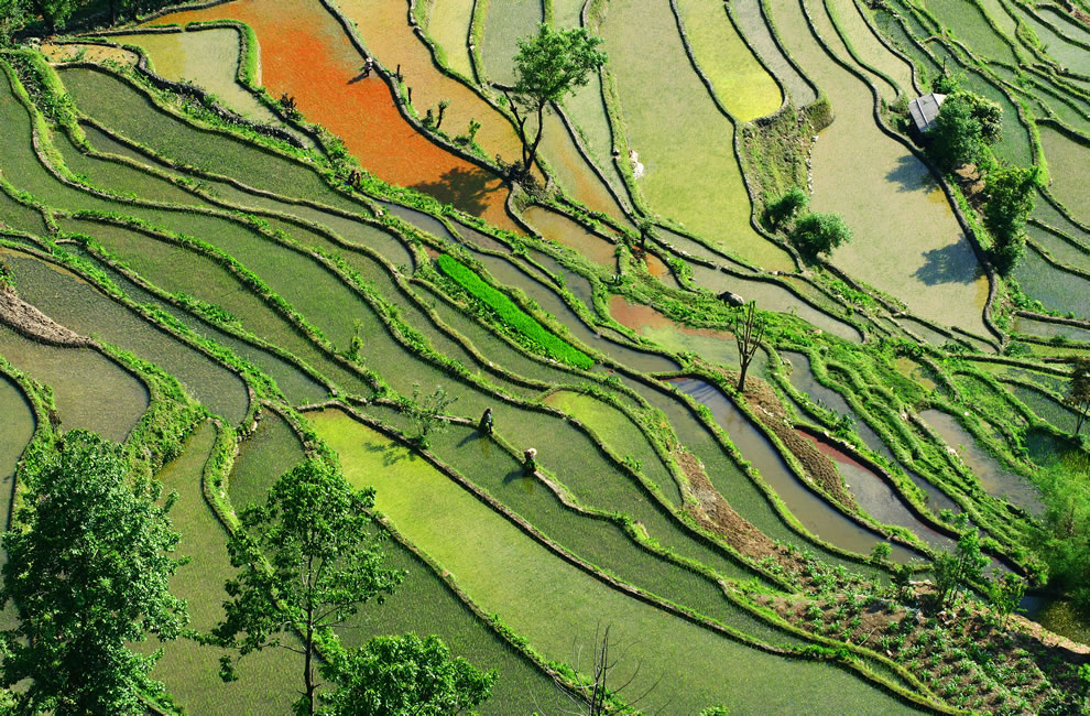 Subsistence farming in Yunnan Province, southern China