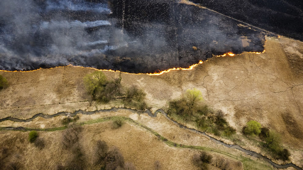 Drone aerial photography of meadow burning in Poland