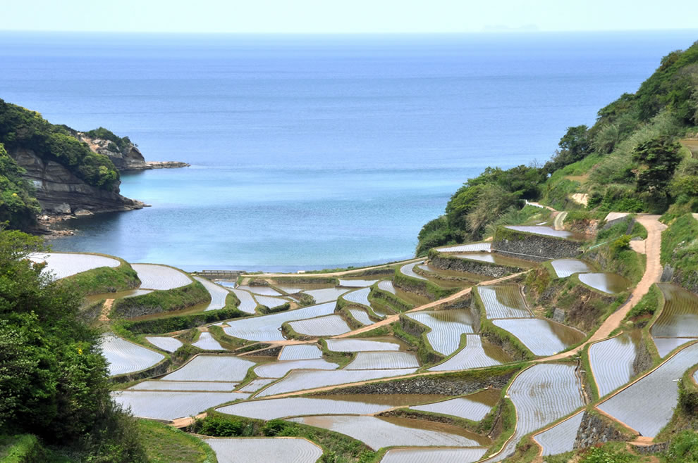 Hamanoura (Saga) rice terraces in Japan