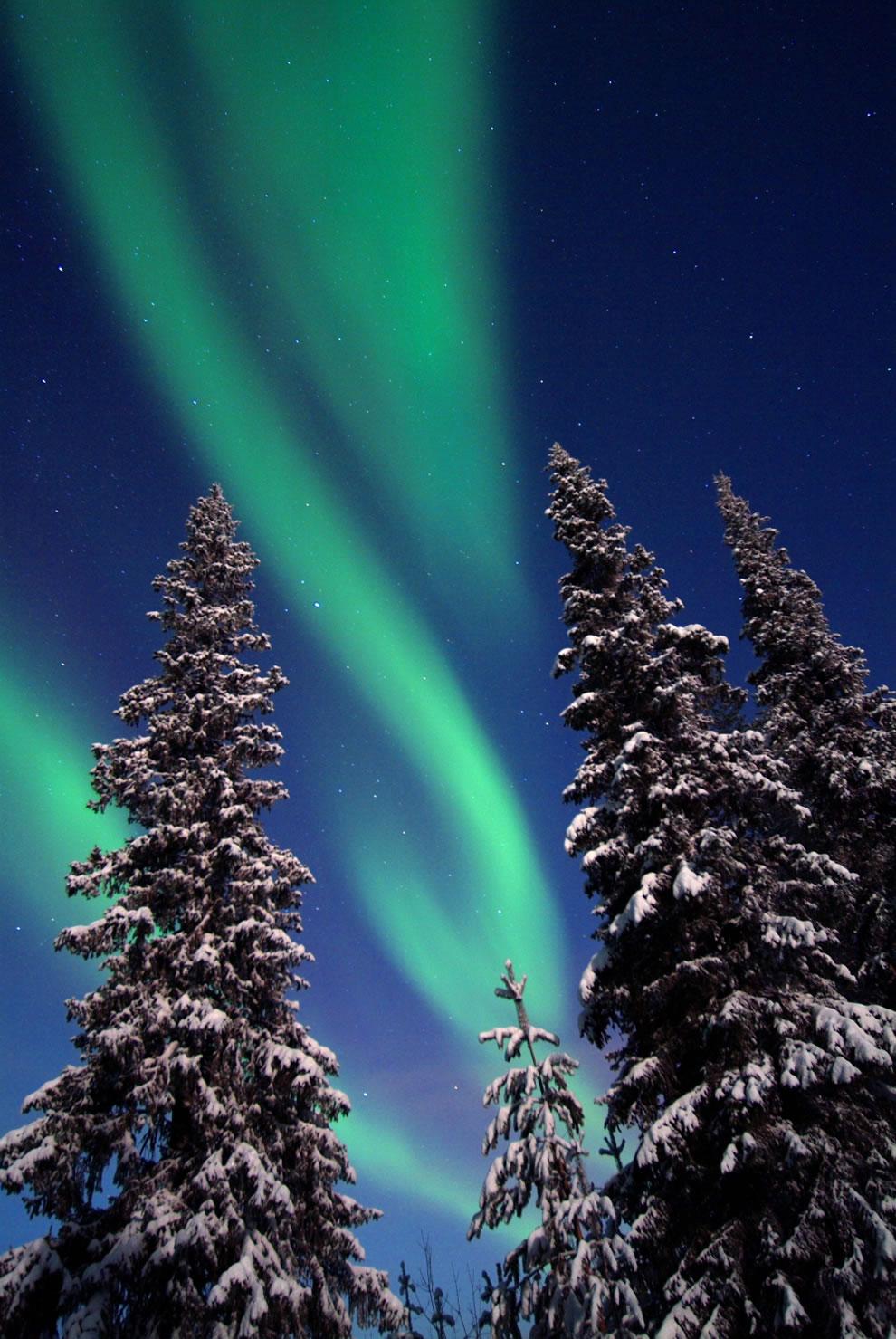 Aurora - Northern lights in Lapland