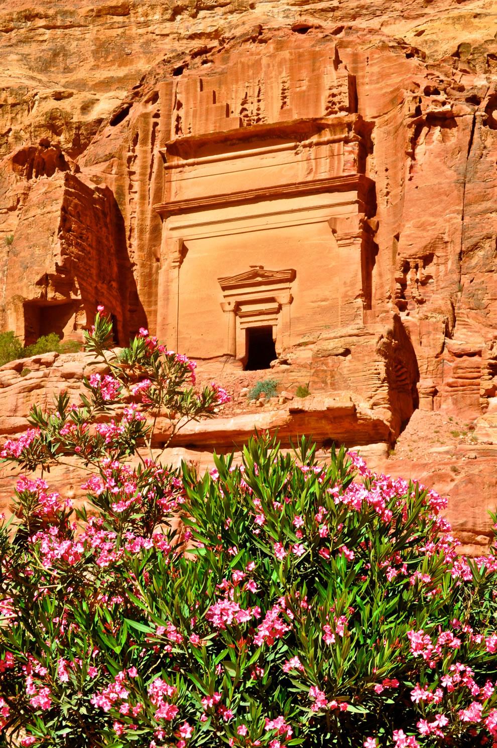 Pretty Petra