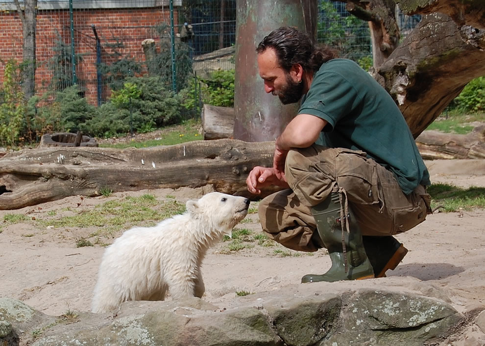 Knut & Thomas Dörflein at Berlin Zoo