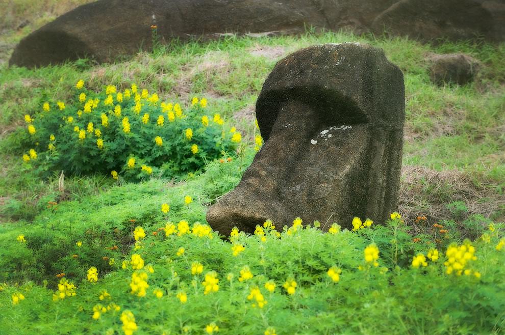 Easter Island Moai found inside the extinct volcano at the quarry Rano Raraku