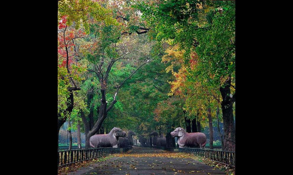 Chinese Gardens - Autumn in China's Shixianglu garden