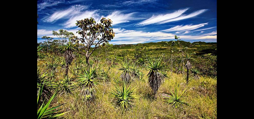 Landscape at Chapada dos Veadeiros National Park - Alto Paraíso de Goiás