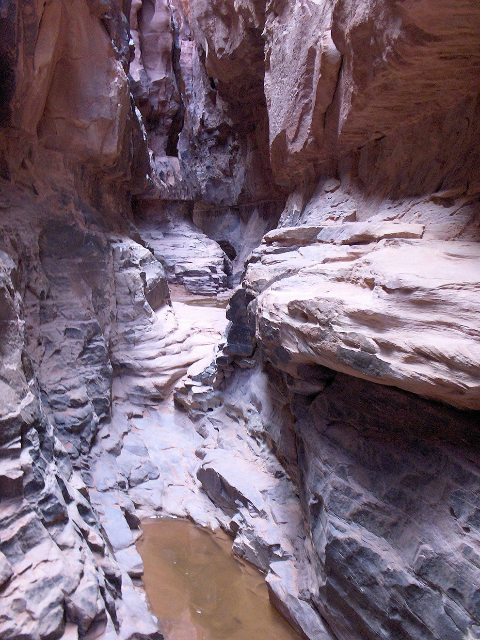Pools of water in the gorges of Wadi Rum