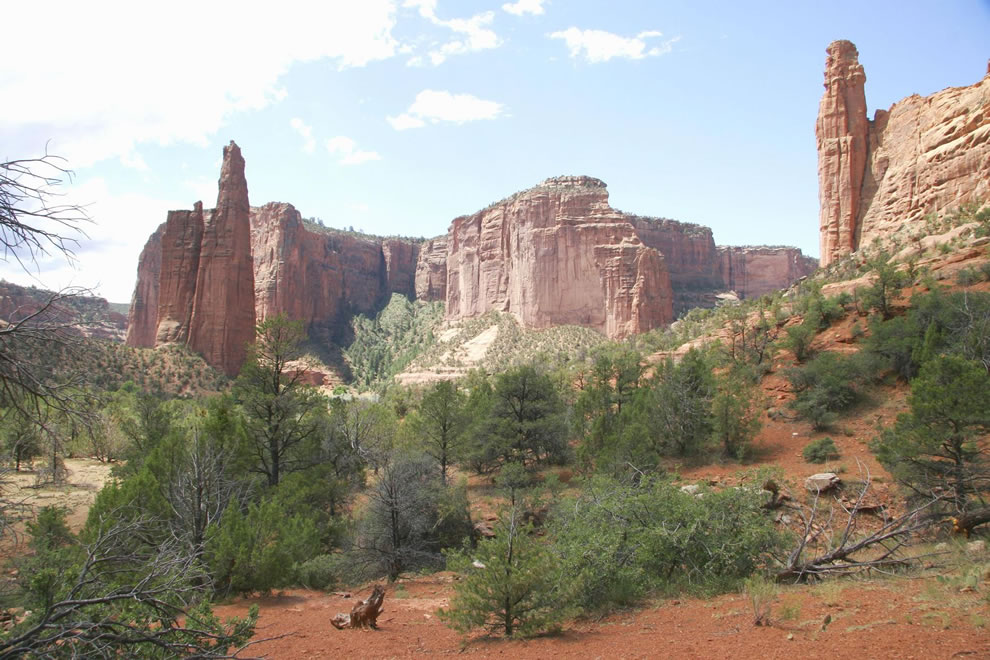 Spider Rock and Face Rock