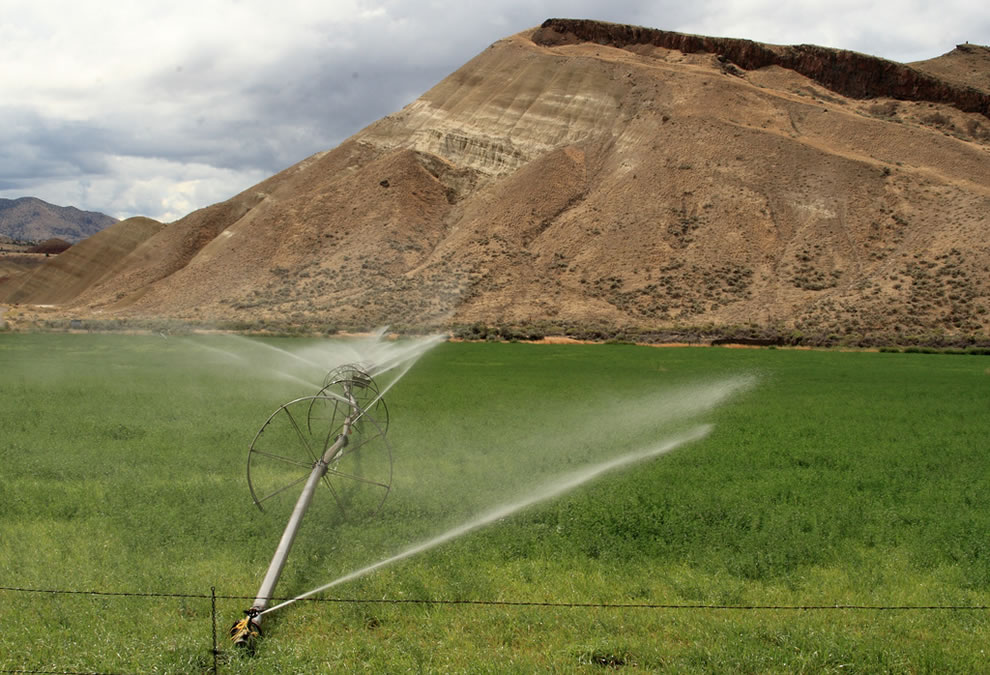 Trying to grow crops in the high desert country near John Day Fossil Beds National Monument - Painted Hills Unit