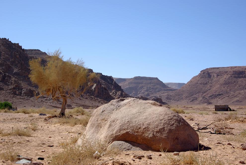 Wadi Rum, near Rum Station