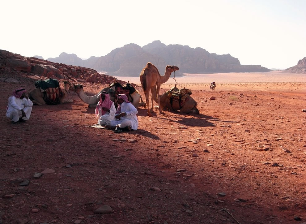the gathering in wadi rum desert
