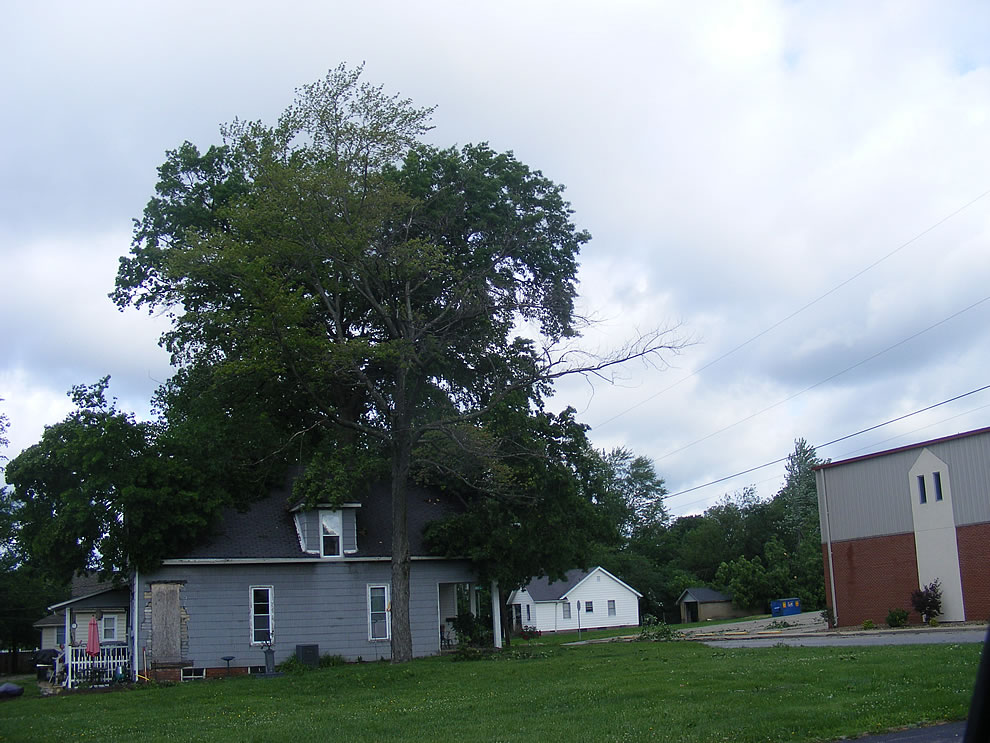 Another giant tree attacking a house, trees down all over after storm rips through southern Indiana - Boonville