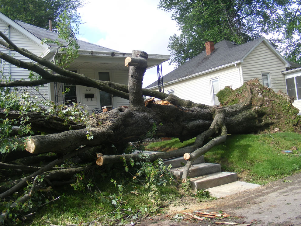 Lots of clean up in Boonville Indiana after night storm rips through on May 25 2011 - this tree used to be over road