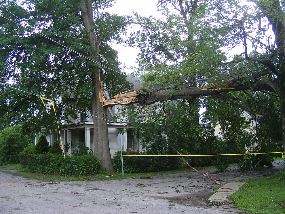 Trees and power lines down - 20,000 without power in southern indiana after storm