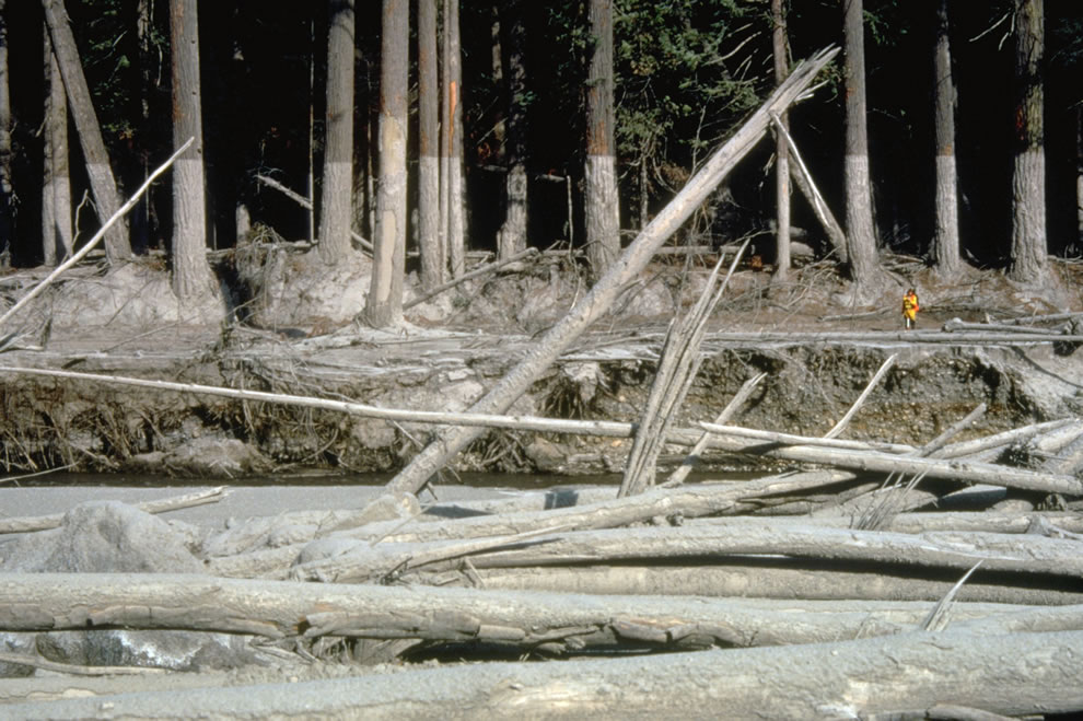mudline left behind along muddy river AFTER eruption mt st  helens10-23-80