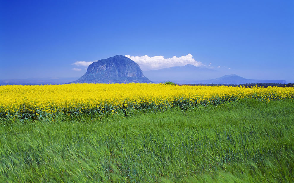 Sanbang Mountain on Jeju Island)