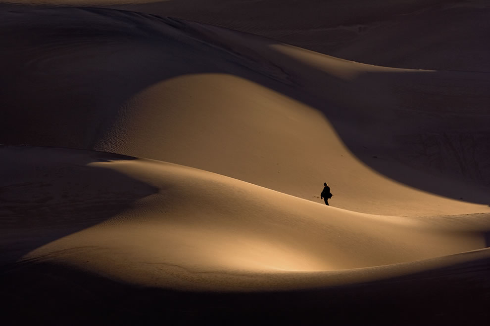 Lone in Dune - Sand Dunes, Stovepipe Wells, Death Valley National Park