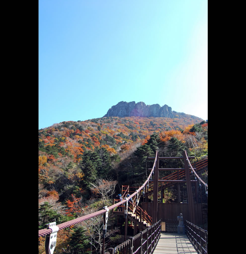 We hiked up Hallasan 한라산. it was over 20k!! i dont even want to talk about sorry too many bad memories