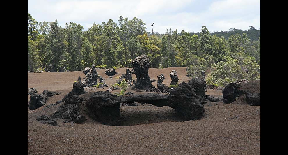 Family of lava tree casts