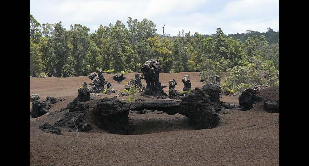 Family of lava tree casts
