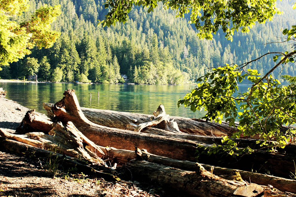 Lake Crescent, Olympic National Park Forest, Washington