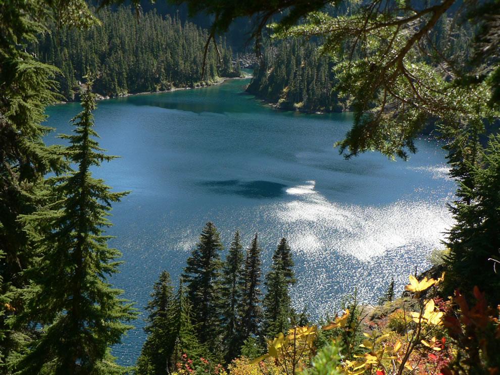Rachel Lake 4640+ feet, Subalpine Fir and Mountain Hemlock forest