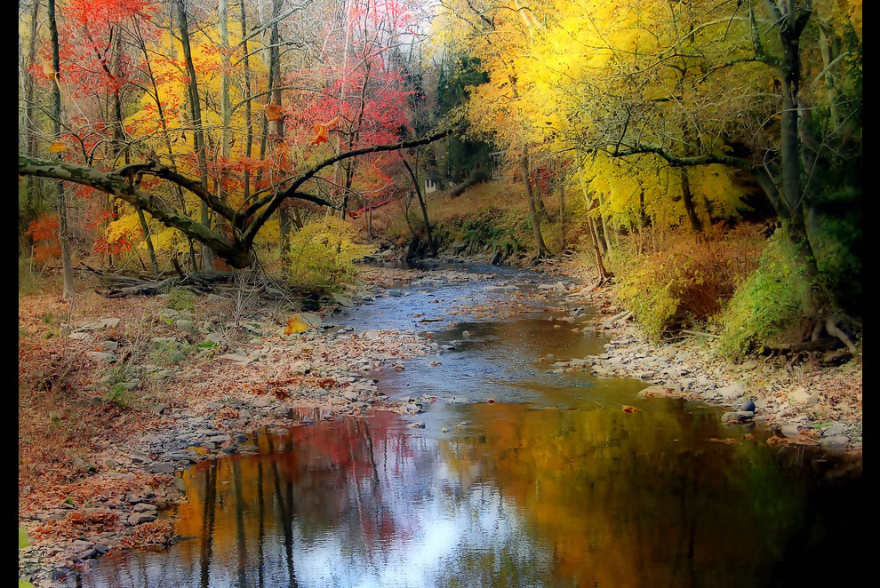 Autumn Stream in Pennsylvania