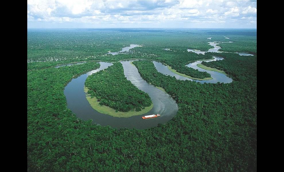 Brazilian Amazon