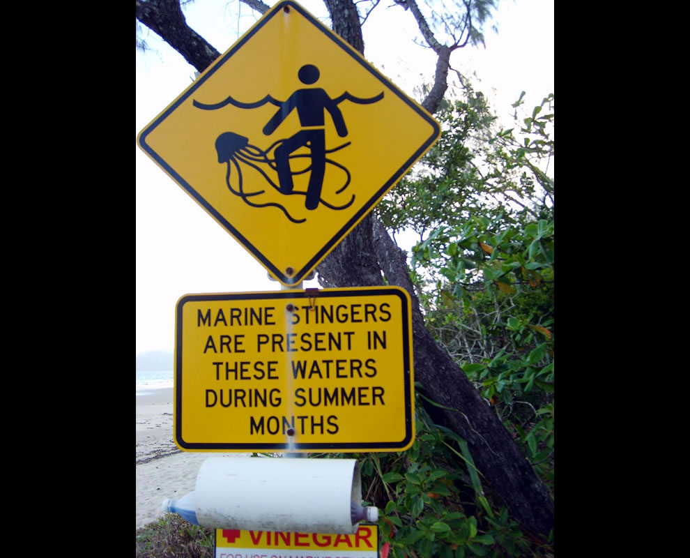 Port Douglas, Queensland - Marine Stingers Present Sign