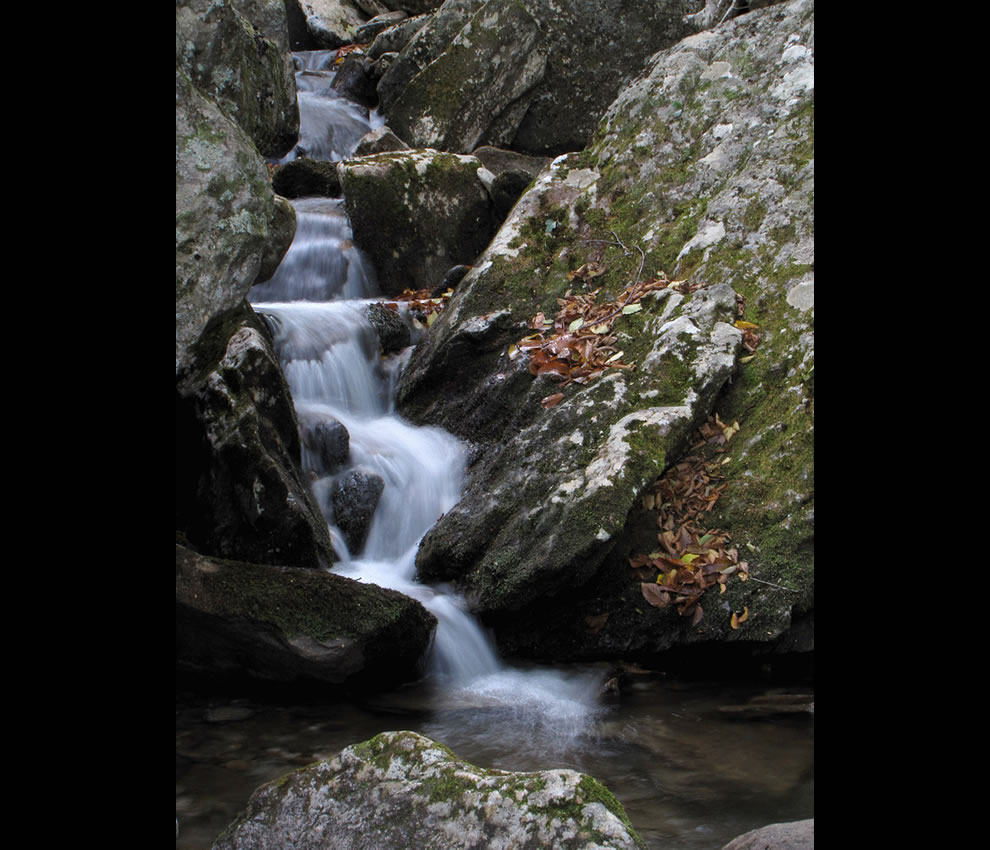 Mountain Creek Along the Nuwati Trail on Grandfather Mountain