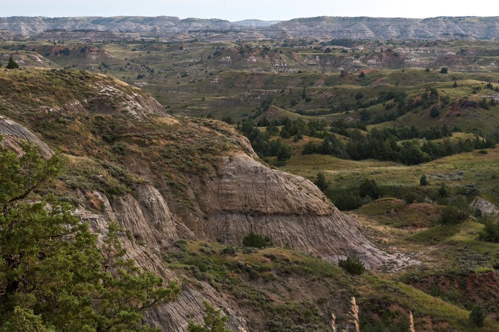 Early morning at Theodore Roosevelt National Park
