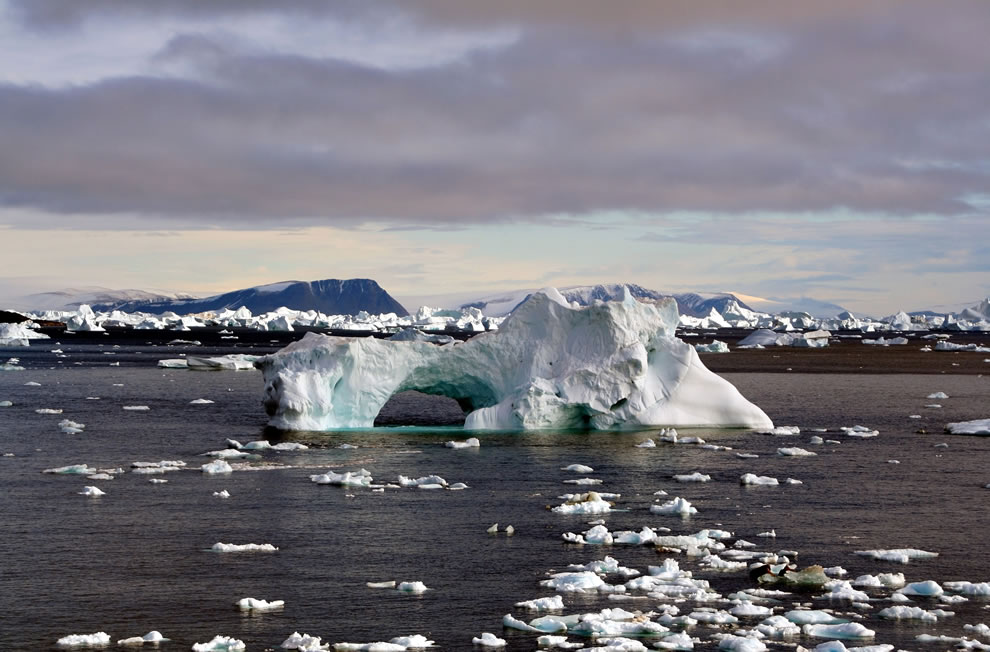 Icebergs around Cape York, Greenland