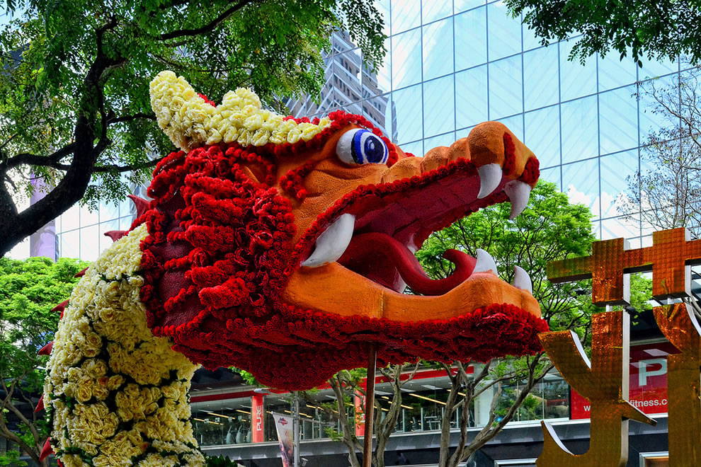 Chinese New Year dragon 'dressed' in flowers