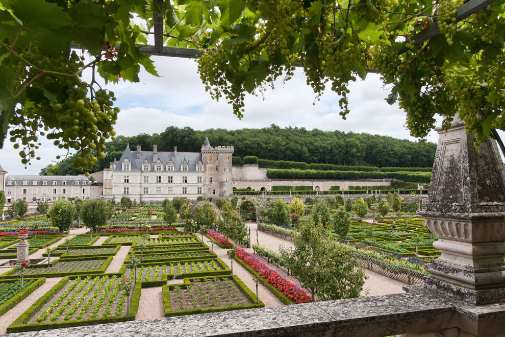castle and gardens at Château de Villandry