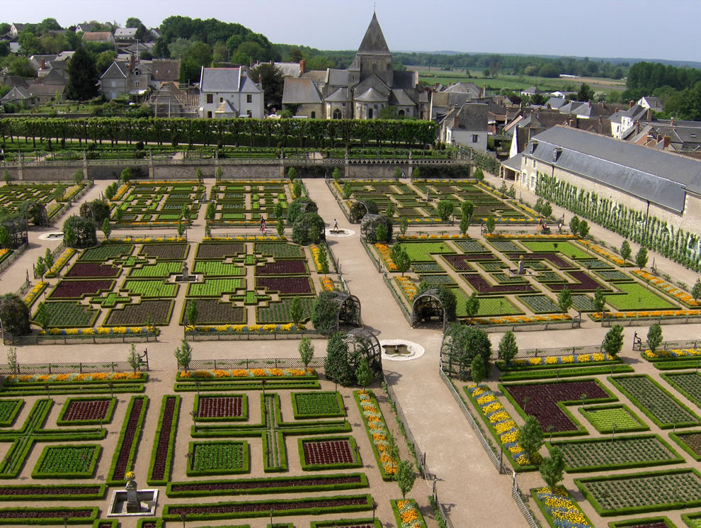Vegetable garden at the château de Villandry