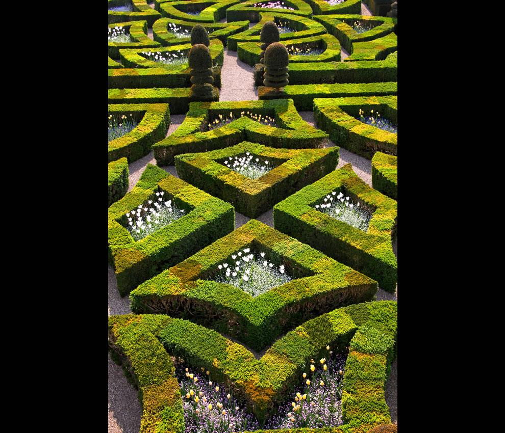 Fickle Love, Villandry Les jardins du château