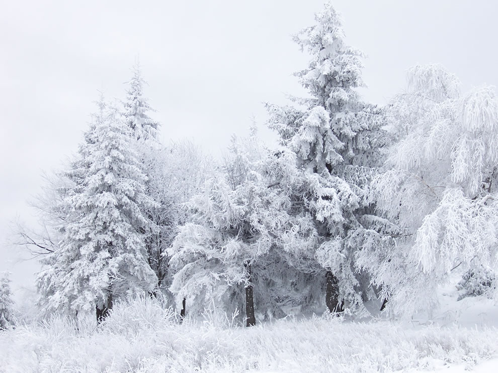 Winter snowy scene at Shipka Pass in Bulgaria