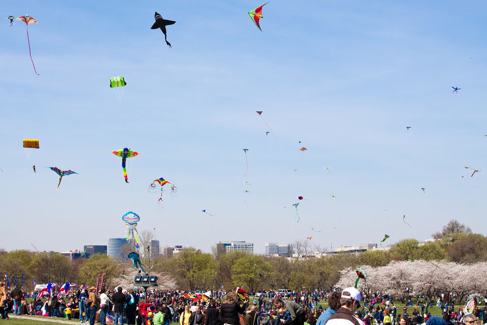 Many kites took to the sky during the 2010 Smithsonian Kite Festival in Washington, DC