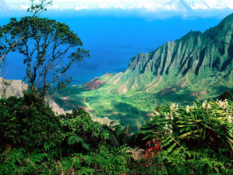 Pacific Breezes Kalalau Valley Kauai Hawaii