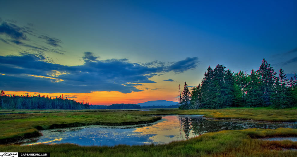Acadia National Park Maine Sunset Over Mountain Pine Tree