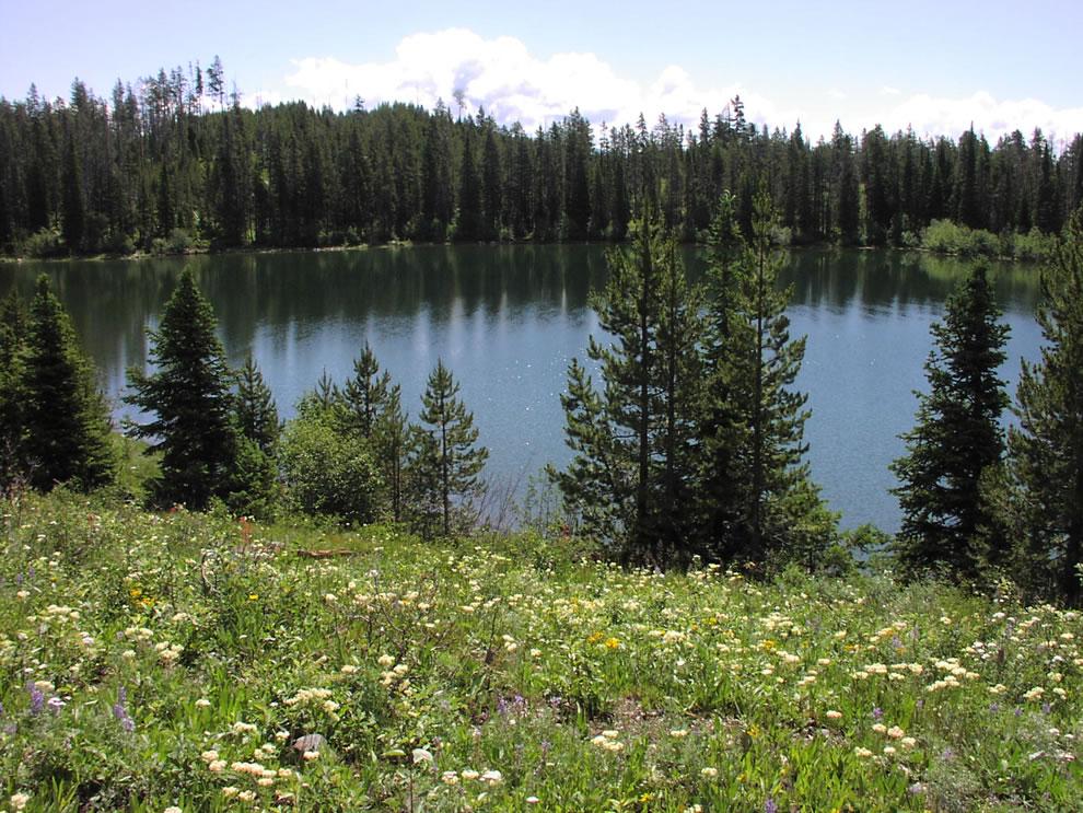 Bearpaw Lake at Grant Teton NP