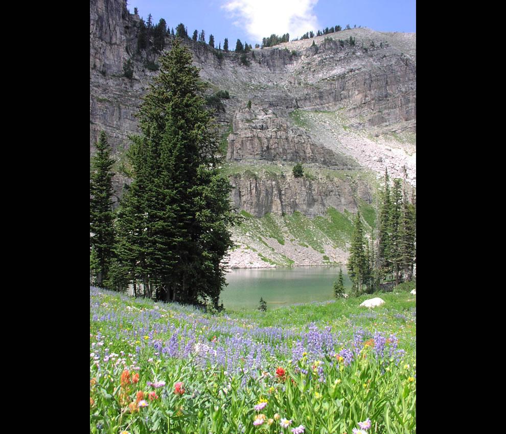 Marion Lake at Grand Teton National Park