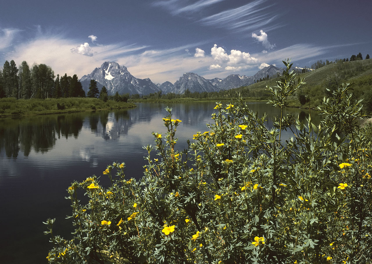 Oxbow Bend outlook in the Grand Teton National Park in the Teton Range, Wyoming, United States